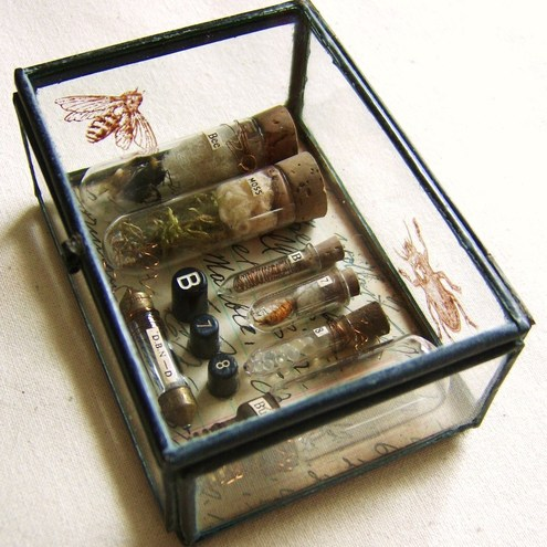 Mini Museum - Glass Box Assemblage £55.00, Comedaygoday