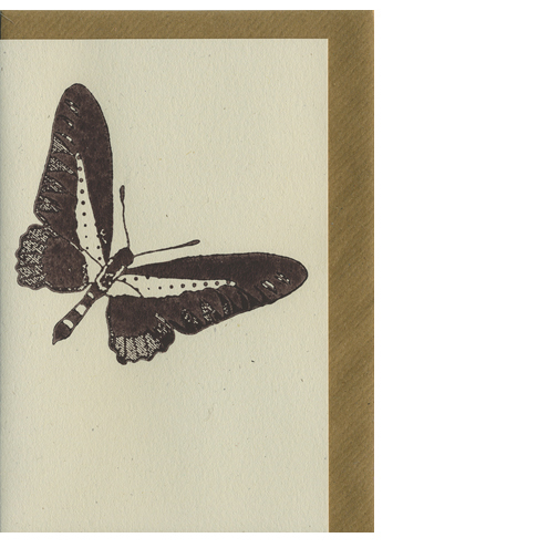 Illustrated Cards - Butterfly Woodblock Printed Card