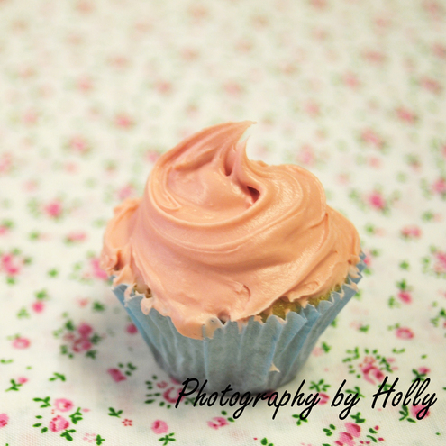 Cupcake Print by Photography by Holly