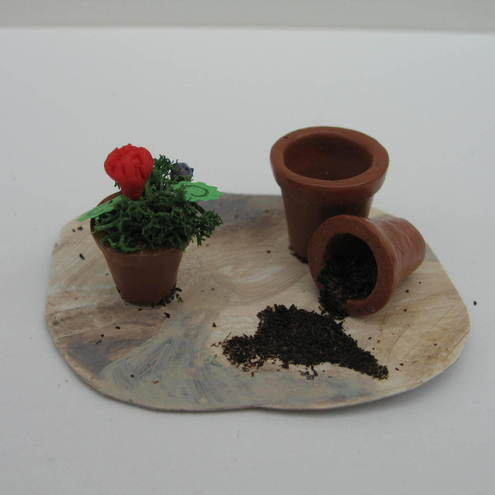 Miniature geranium set