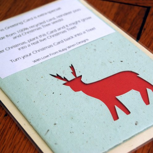 100% Recycled Reindeer Poo Card and includes real viable Christmas Tree Seeds