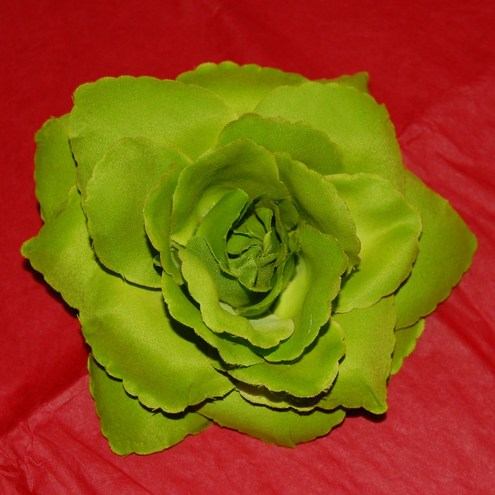 Mexican Rose Hair Flower
